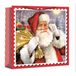 Jumbo Christmas Gift Bag Woven Square Shopping Bag 44cm Santa Claus