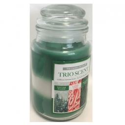 Trio Scent Christmas Bell Jar Candle Winter Woods Candy Cane Frosted Pine 22H