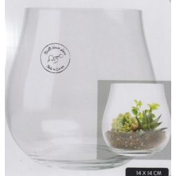 Decoris 14cm Belfast Glass Vase Wide Cactus Home Decoration Flower Display