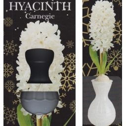 White Hyacinth Glass Vase