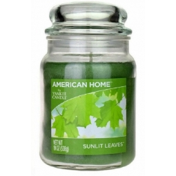 American Home Large Scented Yankee Candle 19oz 538g Green Sunlit Leaves